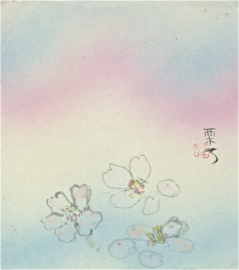 flowers, illustrated by Kris Kondo