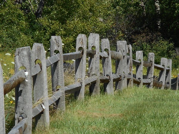 a photo of a wooden fence in greenery by Tom Clausen