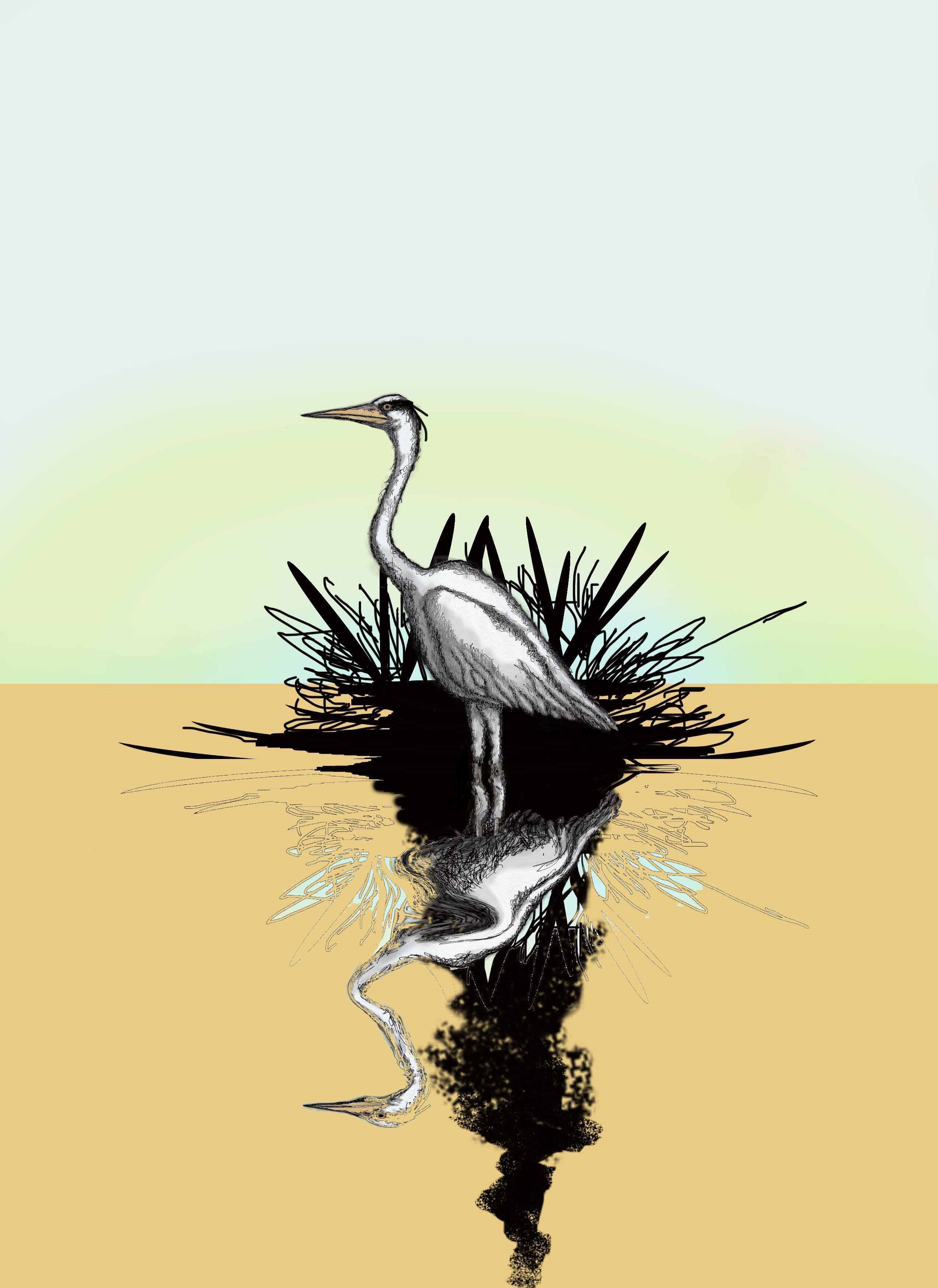 a stylized image of a heron reflected in water by Martin Taankink
