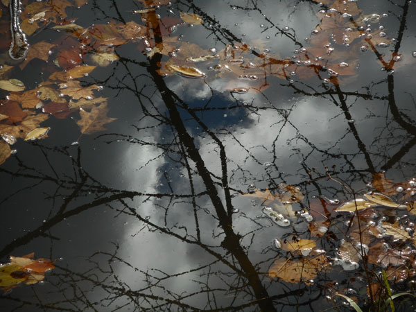 a photo of a cloudy sky reflected in an icy pond by Tom Clausen